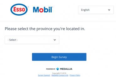 Esso Customer Satisfaction Survey
