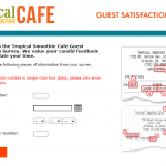 Tropical Smoothie Survey